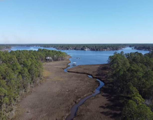 Lot 30 D Osprey Lane, Freeport, FL 32439 (MLS #871643) :: The Honest Group