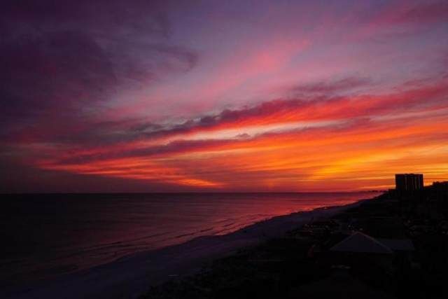 9815 W Us 98 Highway #903, Miramar Beach, FL 32550 (MLS #871991) :: Back Stage Realty