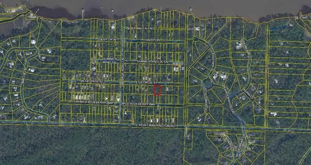 TBD E Georgie East Street, Santa Rosa Beach, FL 32459 (MLS #872430) :: Counts Real Estate Group