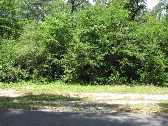 1 ACRE Houston Lane, Crestview, FL 32539 (MLS #872533) :: NextHome Cornerstone Realty