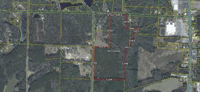 443 Bob Sikes Road, Defuniak Springs, FL 32435 (MLS #872540) :: Better Homes & Gardens Real Estate Emerald Coast
