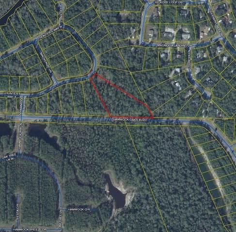 Lot 55 N J Hunter Way, Freeport, FL 32439 (MLS #872916) :: Scenic Sotheby's International Realty
