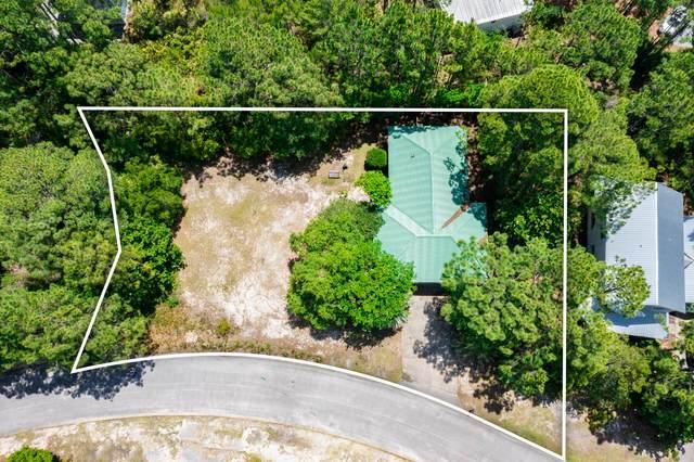 356 Wood Beach Drive, Santa Rosa Beach, FL 32459 (MLS #873214) :: Linda Miller Real Estate