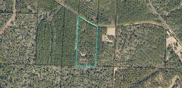 12.83 AC James Peaden Road, Baker, FL 32531 (MLS #873434) :: Counts Real Estate Group, Inc.