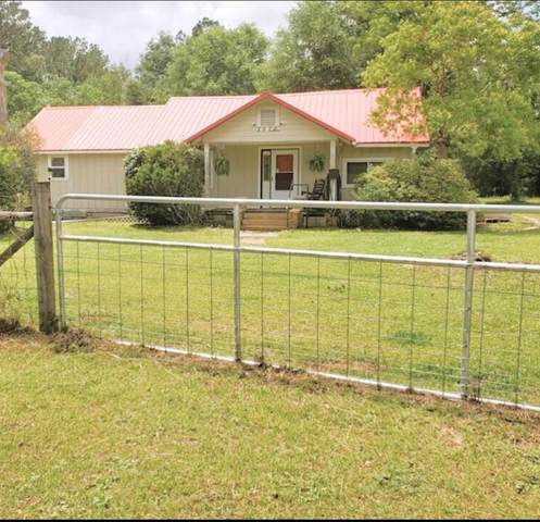 2570 Highway 183A, Ponce De Leon, FL 32455 (MLS #874183) :: Counts Real Estate on 30A