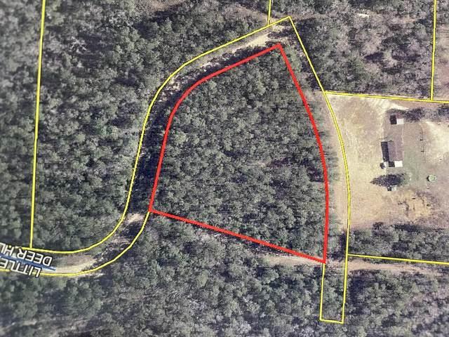 000 Little Deer Hill Road, Defuniak Springs, FL 32435 (MLS #874184) :: Better Homes & Gardens Real Estate Emerald Coast