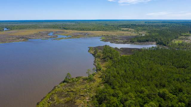 LOT 5 Part Of Atzberger Island, Santa Rosa Beach, FL 32459 (MLS #874346) :: Linda Miller Real Estate