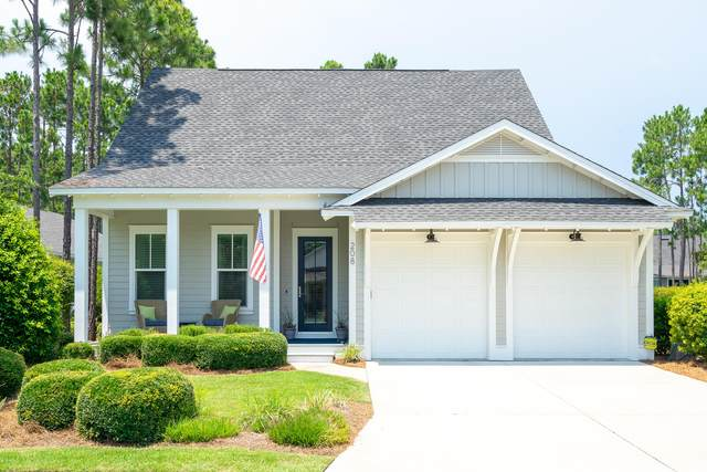 208 Jack Knife Drive, Inlet Beach, FL 32461 (MLS #874489) :: John Martin Group | Berkshire Hathaway HomeServices PenFed Realty