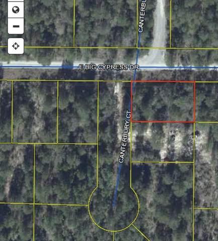 lot 9 E Big Cypress Drive, Defuniak Springs, FL 32433 (MLS #874631) :: The Chris Carter Team