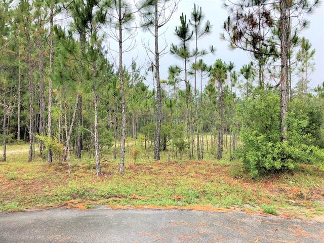 Lot 14 Gulf Pines Court, Freeport, FL 32439 (MLS #874836) :: Better Homes & Gardens Real Estate Emerald Coast