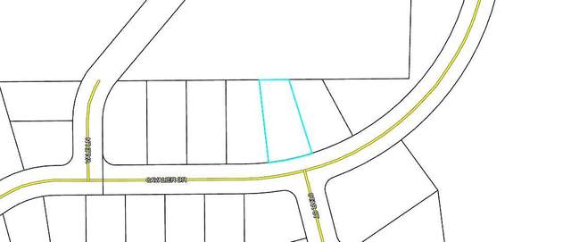 000 Cavalier Drive, Chipley, FL 32428 (MLS #875043) :: The Premier Property Group