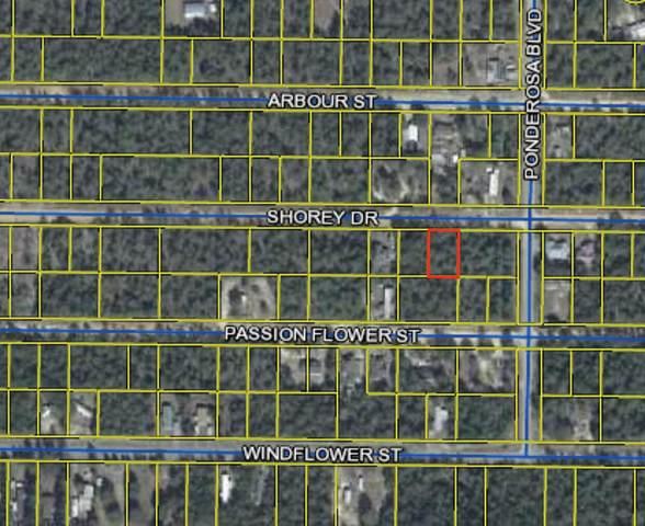 TBD Shorey Drive, Defuniak Springs, FL 32433 (MLS #875091) :: NextHome Cornerstone Realty