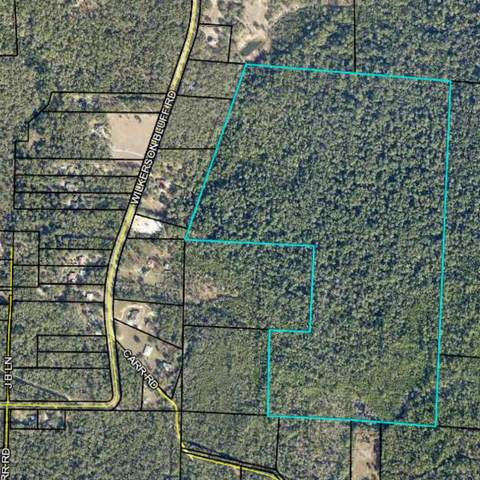 90 Acres Wilkerson Bluff Road, Holt, FL 32564 (MLS #875214) :: Linda Miller Real Estate
