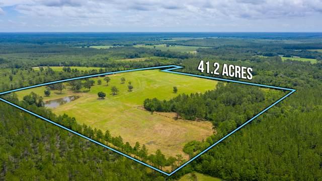 41.2 ACRES Chestnut Creek Rd, Darlington, FL 32433 (MLS #875836) :: Better Homes & Gardens Real Estate Emerald Coast