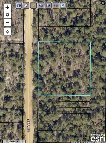 1.14 Acres Colt Drive, Crestview, FL 32539 (MLS #876239) :: Back Stage Realty