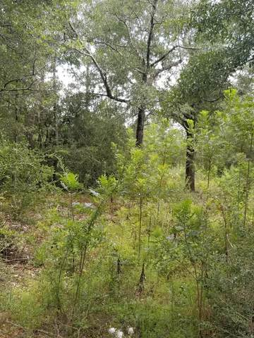 00 Oakridge Road, Defuniak Springs, FL 32433 (MLS #876627) :: 30A Escapes Realty
