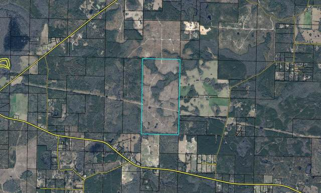 480 Acres Wilderness Road, Vernon, FL 32462 (MLS #877450) :: Back Stage Realty