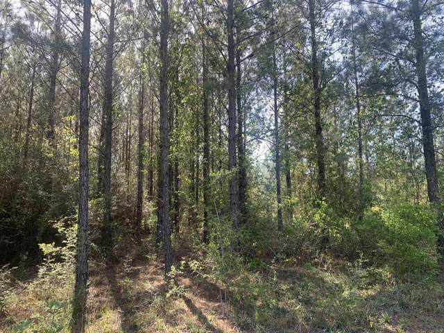 17 acres Munson Highway Parcel A, Milton, FL 32570 (MLS #877481) :: Scenic Sotheby's International Realty
