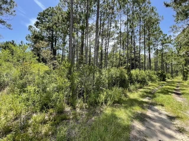 Lot 2E Delano Street, Santa Rosa Beach, FL 32459 (MLS #877651) :: Berkshire Hathaway HomeServices Beach Properties of Florida