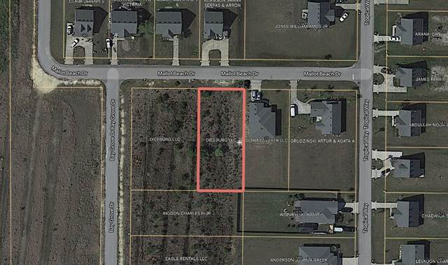 Lot 49 Mallot Beach Drive, Freeport, FL 32439 (MLS #877677) :: Linda Miller Real Estate
