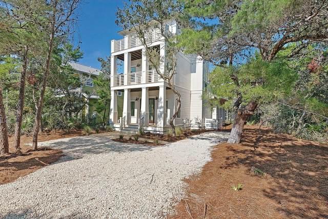 248 Williams Street, Santa Rosa Beach, FL 32459 (MLS #877827) :: RE/MAX By The Sea