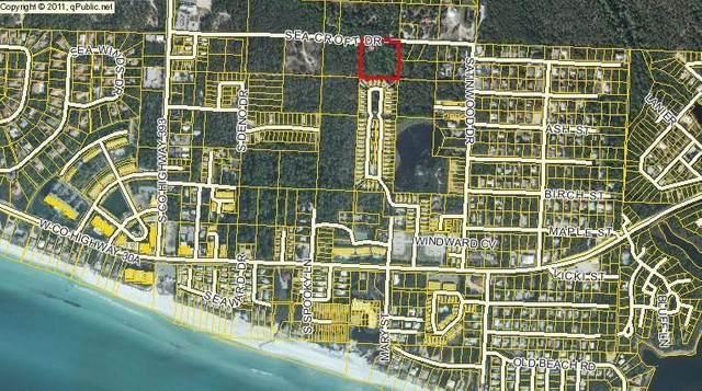 163 Sea Croft Drive, Santa Rosa Beach, FL 32459 (MLS #877886) :: 30a Beach Homes For Sale