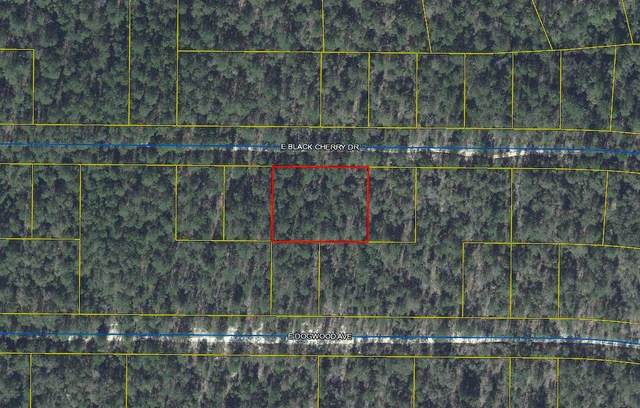 TBD E Black Cherry Drive, Defuniak Springs, FL 32434 (MLS #878127) :: Briar Patch Realty
