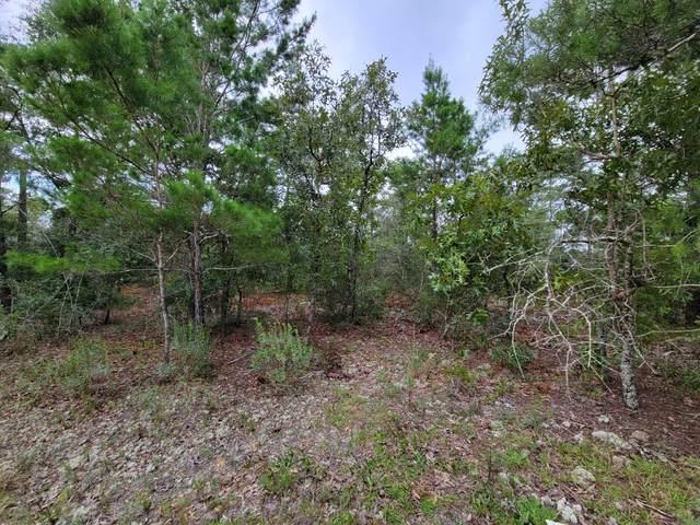 Lot 60 Lafavre Lane, Defuniak Springs, FL 32433 (MLS #878577) :: The Honest Group