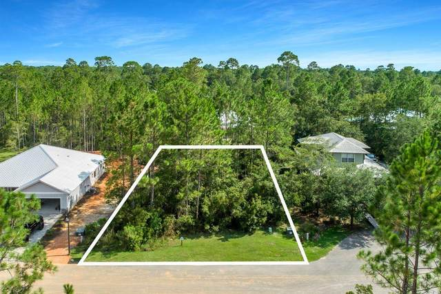 Lot 17 Grizzly Street, Freeport, FL 32439 (MLS #879922) :: Briar Patch Realty