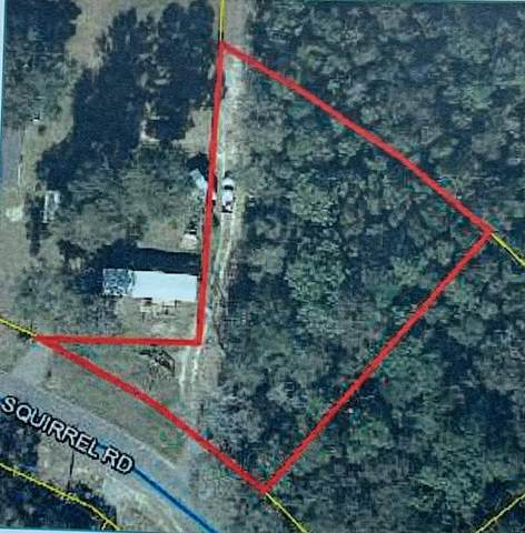 Lot1B Squirrel Road, Defuniak Springs, FL 32433 (MLS #880554) :: Anchor Realty Florida