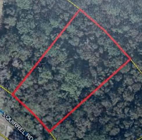 Lot2B Squirrel Road, Defuniak Springs, FL 32433 (MLS #880556) :: The Ryan Group