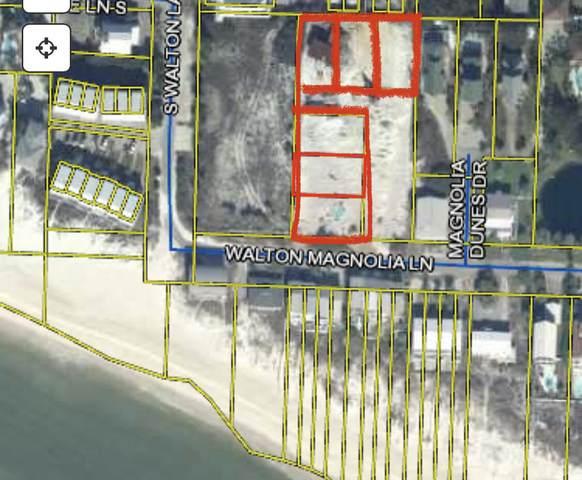 Lot 1 Jan Lane, Inlet Beach, FL 32461 (MLS #880717) :: Briar Patch Realty