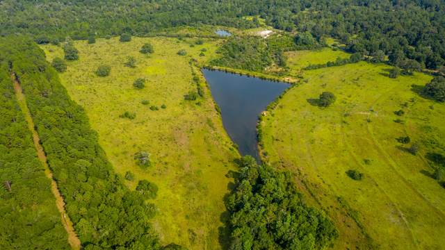 25+/-AC Hwy 393, Crestview, FL 32539 (MLS #881252) :: The Premier Property Group