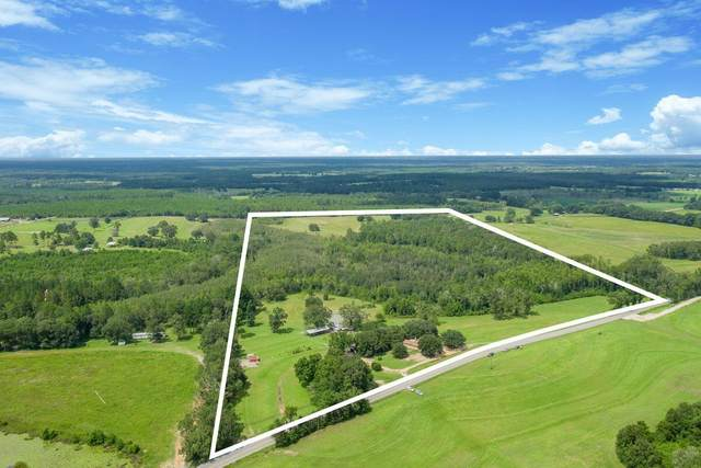 5723 E State Highway 2, Westville, FL 32464 (MLS #881481) :: Somers & Company