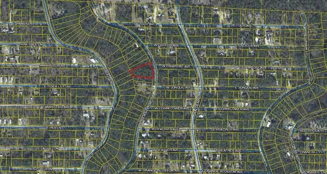 Lot 85-87 Brookside Drive, Defuniak Springs, FL 32433 (MLS #881775) :: Beachside Luxury Realty