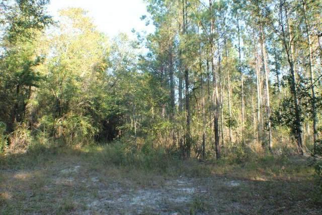 340+/- AC Caveman Road, Laurel Hill, FL 32567 (MLS #882139) :: 30A Escapes Realty