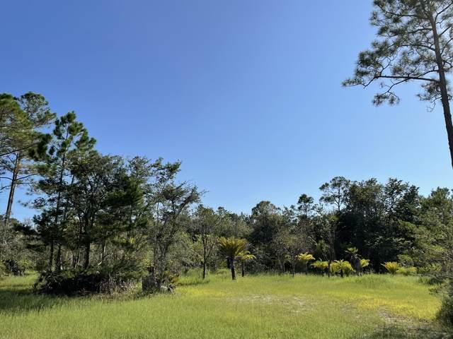 184 N Eden Park Drive, Santa Rosa Beach, FL 32459 (MLS #882275) :: Counts Real Estate Group