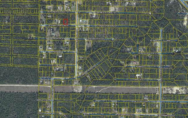.23ac W Snapdragon Street, Defuniak Springs, FL 32433 (MLS #882299) :: The Ryan Group