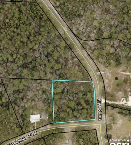 102 Cheyenne Trace, Crestview, FL 32536 (MLS #882441) :: Emerald Life Realty