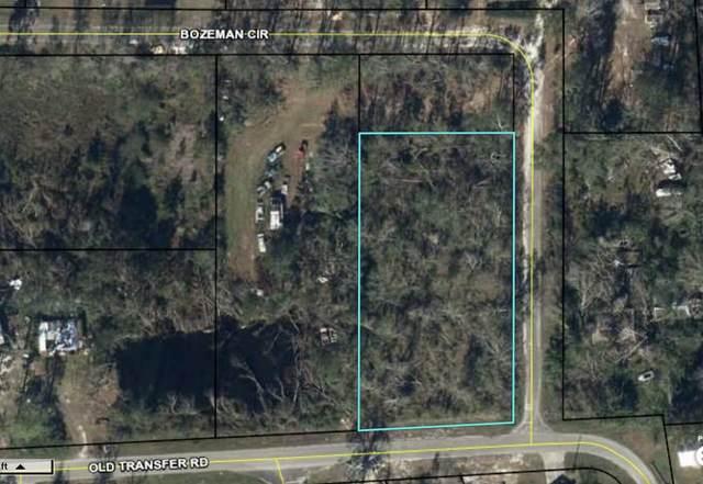 1389 Old Transfer Road, Wewahitchka, FL 32465 (MLS #882638) :: Briar Patch Realty