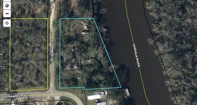 1389 Old Transfer Road, Wewahitchka, FL 32465 (MLS #882643) :: Briar Patch Realty