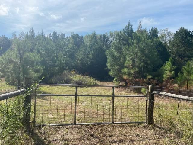 10.7 Ac NE E St Highway 2, Defuniak Springs, FL 32433 (MLS #883184) :: Somers & Company