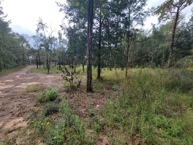 32.5 acres Crooked Creek Road, Ponce De Leon, FL 32455 (MLS #883435) :: Scenic Sotheby's International Realty