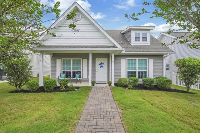 59 Cornelia Street, Freeport, FL 32439 (MLS #883619) :: Briar Patch Realty