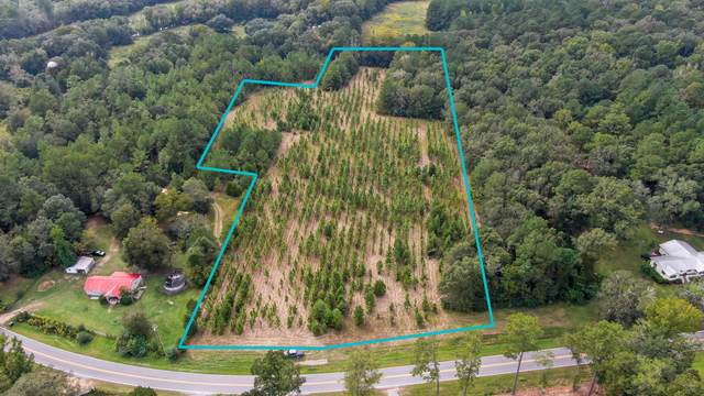 10 AC Co Hwy 183-A, Ponce De Leon, FL 32455 (MLS #883626) :: Scenic Sotheby's International Realty
