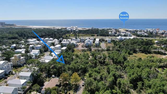 6 Sharlene Lane, Inlet Beach, FL 32461 (MLS #883834) :: The Ryan Group