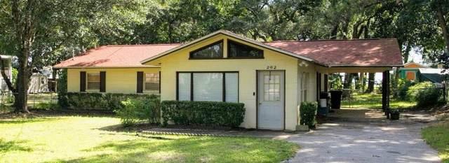 262 Live Oak Street, Freeport, FL 32439 (MLS #883973) :: 30A Escapes Realty