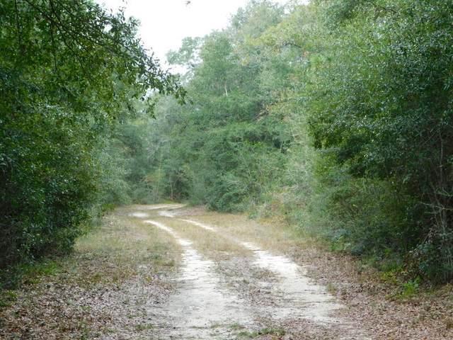 TBD Wiggins Road, Holt, FL 32564 (MLS #884043) :: Anchor Realty Florida