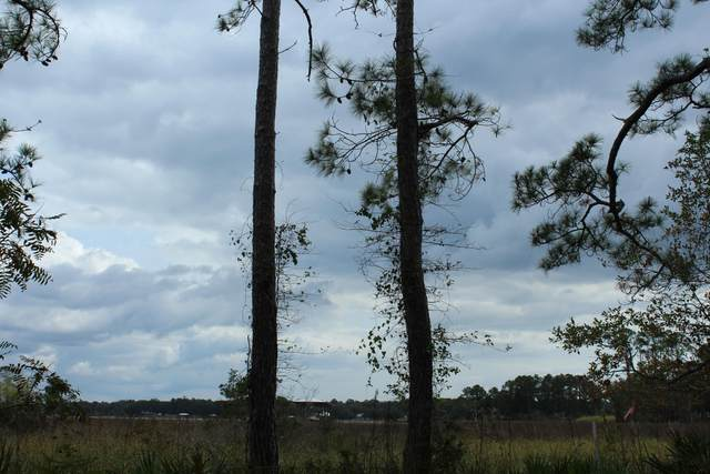LOTS 8 & 9 Cross Creek Circle, Freeport, FL 32439 (MLS #884358) :: RE/MAX By The Sea