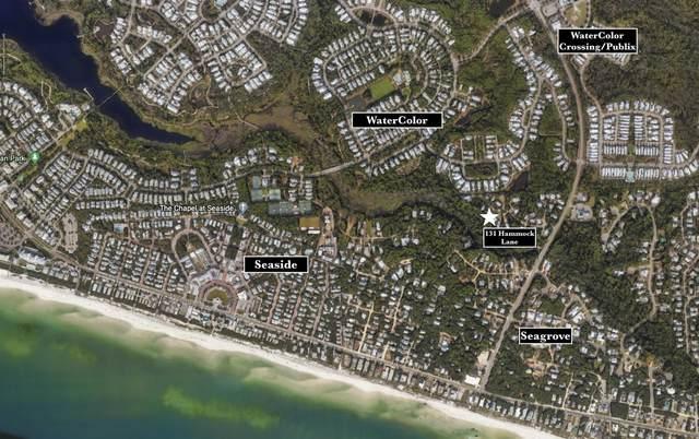 131 Hammock Lane, Santa Rosa Beach, FL 32459 (MLS #884376) :: Livin Right Real Estate
